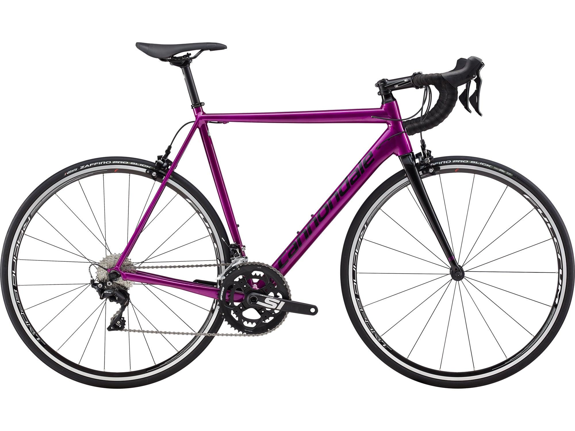 Best Bikes for Beginner Triathletes
