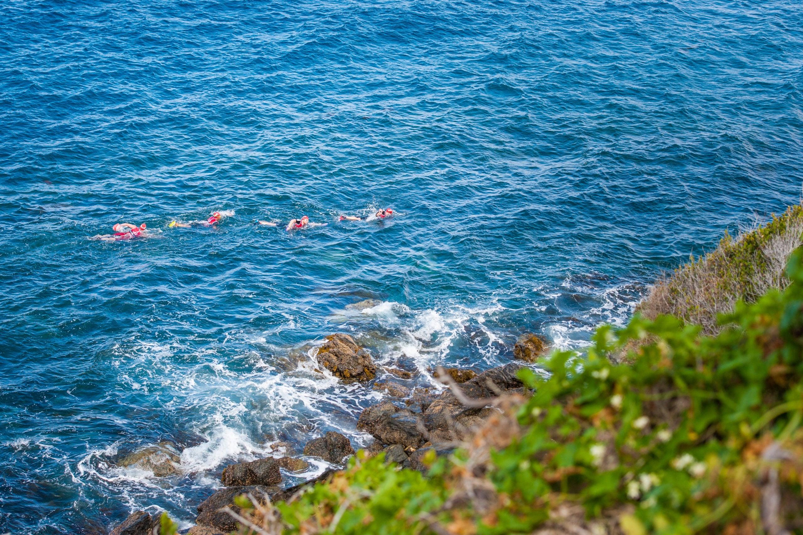 Otillo Catalina Island