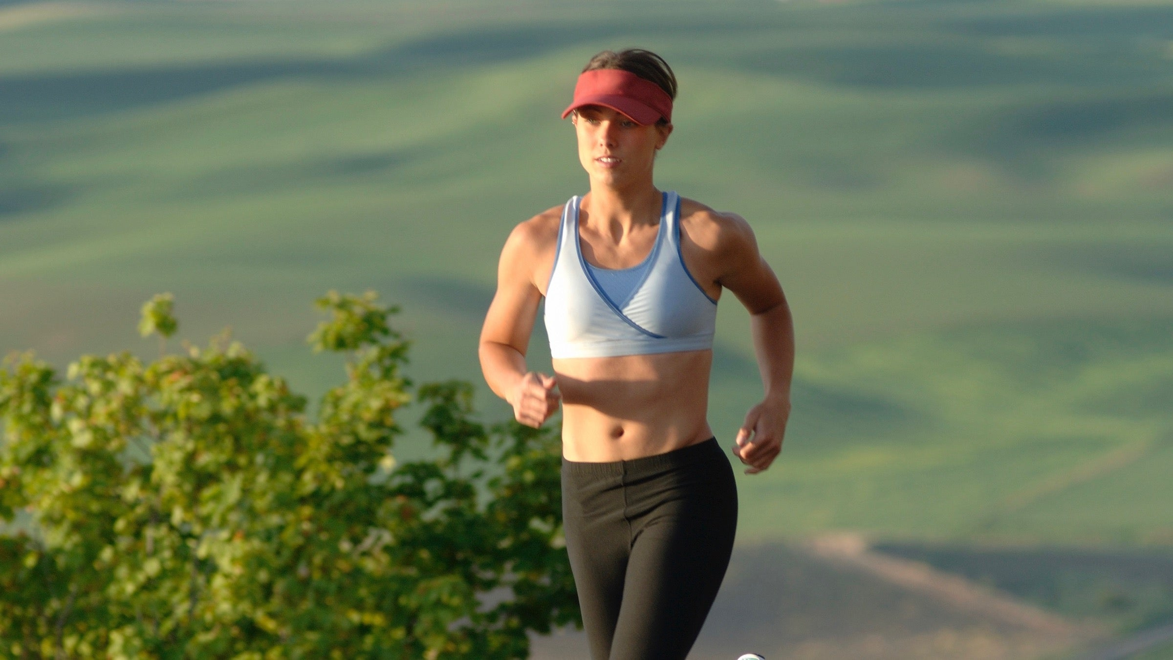 Ask Stacy: Why Is Gut Health So Important? - Triathlete